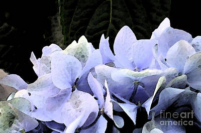 Photograph - Watercolor Hydrangea by Kathi Shotwell