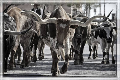Nighttime Street Photography - Watercolor Longhorns by Joan Carroll
