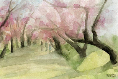 Cherry Blossoms Painting - Watercolor Painting Of Cherry Blossom Trees In Central Park Nyc by Beverly Brown Prints