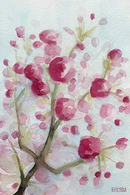 Cherry Painting - Watercolor Painting Of Pink Cherry Blossoms by Beverly Brown