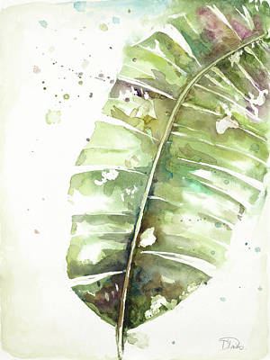 Plantain Painting - Watercolor Plantain Leaves II by Patricia Pinto