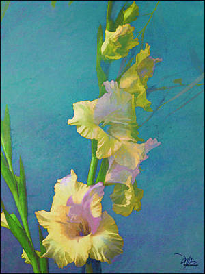 Watercolor Study Of My Garden Gladiolas Art Print by Douglas MooreZart