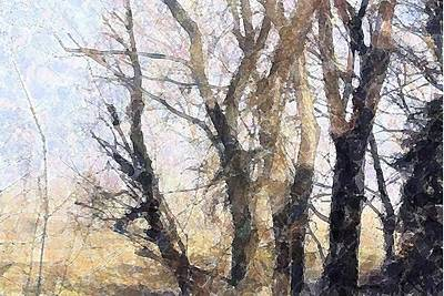 Photograph - Watercolor Trees by Donna G Smith