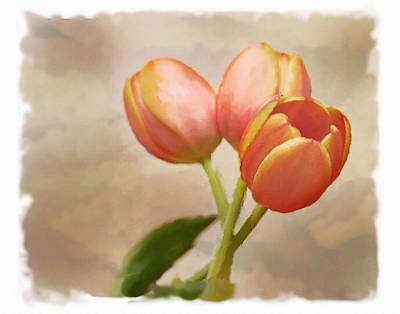 Watercolor Tulips Art Print by David and Carol Kelly