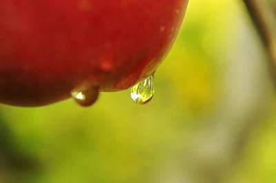 Waterdrop Sliding Off An Apple  Art Print