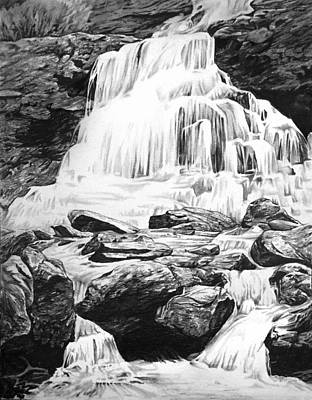 Trout Drawing - Waterfall by Aaron Spong