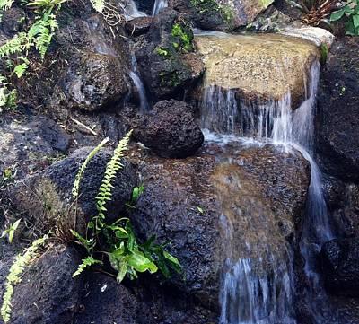 Photograph - Waterfall by Alohi Fujimoto