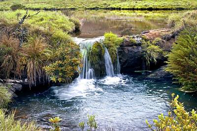 Waterfall And Pool Art Print
