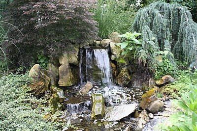 Photograph - Waterfall And Shrubs by John Telfer