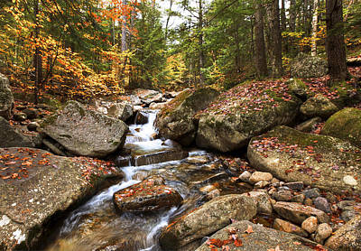 Photograph - Waterfall At Bear Hollow Nh by James Steele