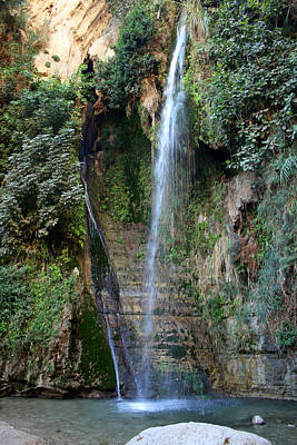 Lovely Lavender - Waterfall at Ein Gedi by Doc Braham