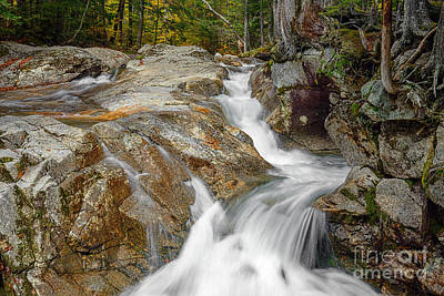 Photograph - Waterfall At Franconia Notch by Sharon Seaward