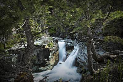 Photograph - Waterfall At Glacier National Park Photo No. 2729 by Randall Nyhof