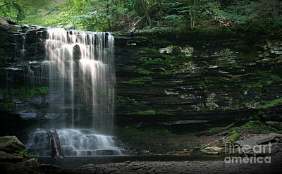 Photograph - Waterfall At Ricketts Glen by E B Schmidt
