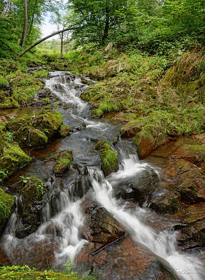 Photograph - Waterfall At The Glen by Theo OConnor