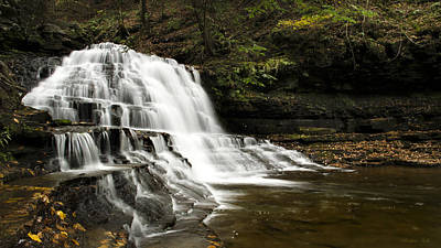 Waterfall Photograph - Waterfall Cascade Salt Springs State Park by Christina Rollo