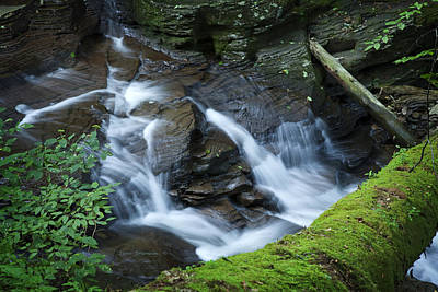 Photograph - Waterfall Cascade Through The Gorge Under Ancient Mossy Hemlock Tree by John Stephens