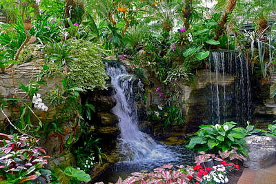 Photograph - Waterfall Garden by Denise Mazzocco