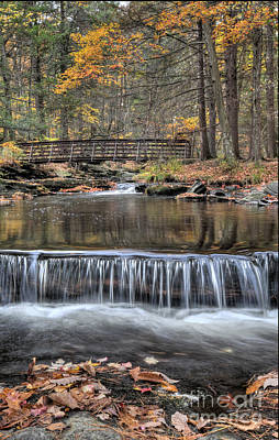 Autumn Leaf On Water Photograph - Waterfall - George Childs State Park by Paul Ward
