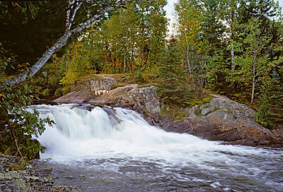 Algonquin Provincial Park Photograph - Waterfall In A Forest, Oxtongue River by Panoramic Images