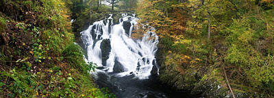 Swallows Photograph - Waterfall In A Forest, Swallow Falls by Panoramic Images
