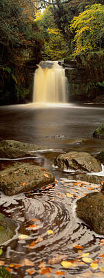 Tree Leaf On Water Photograph - Waterfall In A Forest, Thomason Foss by Panoramic Images