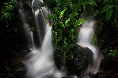 Kerala Photograph - Waterfall In Gavi, Kerala by Vidhu Photography