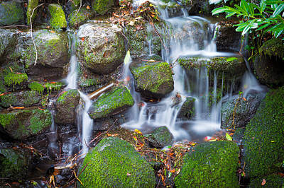 Small Forest. Beauty Photograph - Waterfall In Marlay Park by Semmick Photo