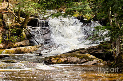 Photograph - Waterfall In Muskoka by Les Palenik