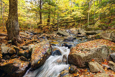 Landscap Photograph - Waterfall In The Fall Nh by James Steele