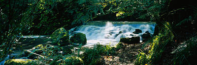 Waterfall In The Forest, Birks O Art Print