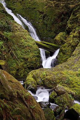 Photograph - Waterfall Near Lake Crescent by Byron Jorjorian