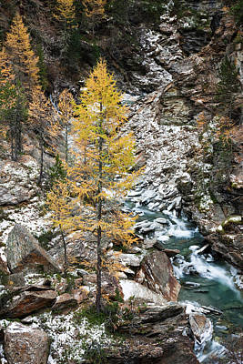 Waterfall Of Creek Plimabach In Valley Art Print