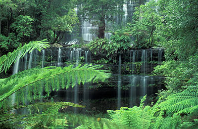 Waterfall Of Streams Australia Art Print by Panoramic Images