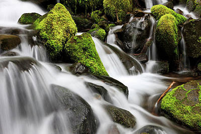 Olympic National Park Photograph - Waterfall Olympic National Park by Tom Norring