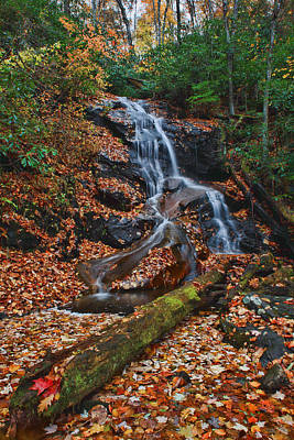 Photograph - Waterfall On Log Hollow by Shari Jardina