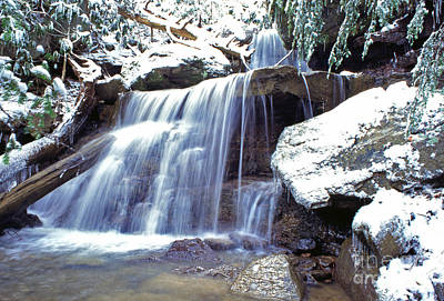 Winter Animals - Waterfall on the Back Fork of the Elk River by Thomas R Fletcher