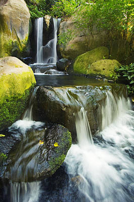 Photograph - Waterfall Stream by Ron Dahlquist - Printscapes