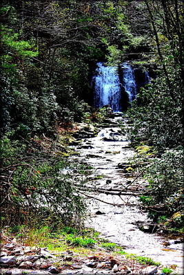 Photograph - Waterfall by Susie Weaver
