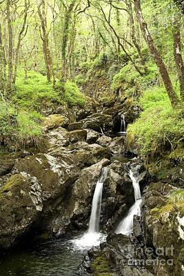 Rock Photograph - Waterfall Through Woodland by Liz Leyden