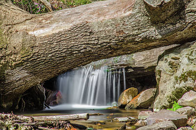 Waterfall Under Fallen Log Print by Jonah  Anderson