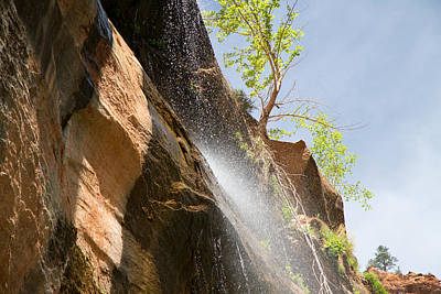 Waterfall Zion National Park Art Print