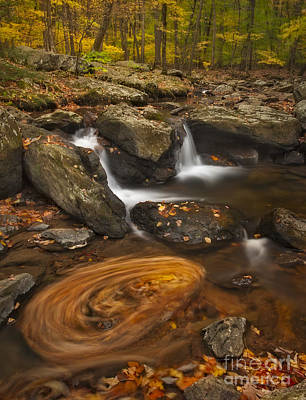 Photograph - Waterfalls And Swirl by Susan Candelario