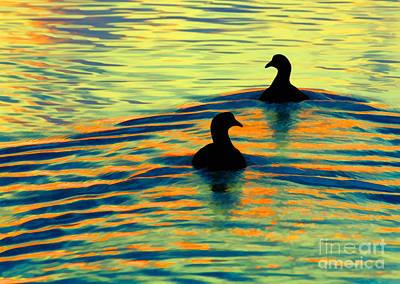 Photograph - Waterfowl by Novastock