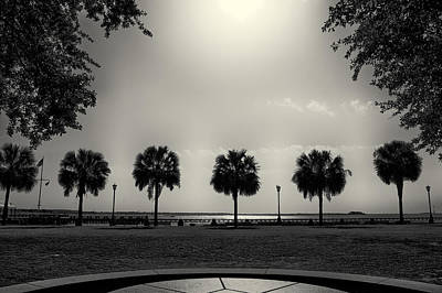Waterfront Park Art Print
