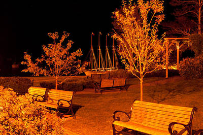 Photograph - Waterfront Park by Paul Mangold