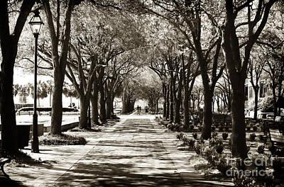 Photograph - Waterfront Park Walk by John Rizzuto