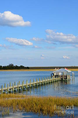 Photograph - Waterfront Property by Bob Sample