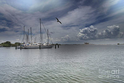 Photograph - Waterfront View  by Liane Wright