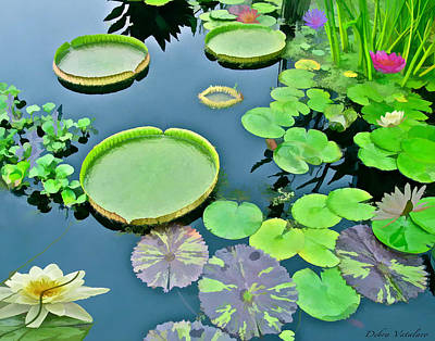 Painting - Watergarden  by Debra     Vatalaro